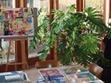 Offene Ateliers im Stadtbezirk Hombruch